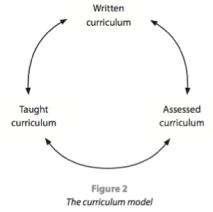 MYP Curriculum Model